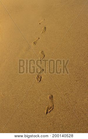 Footprints of the young woman walking on the beach.  Image of a footprint of a human feet on pure golden sand at beach. Detail of a human footprints on sand walking on the beach.