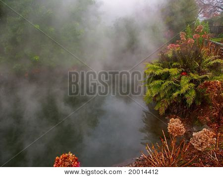 Kuirau Park - New Zealand