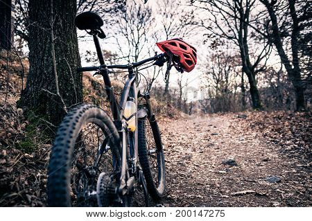 Mountain bike and helmet in autumn woods. MTB bicycle and helmet resting on tree in forest. Adventure and extreme cycling concept sport fitness motivation and inspiration.