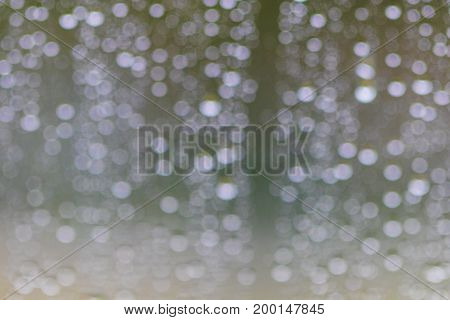 Water Drops On Glass After Rain Background