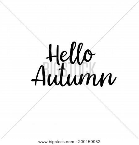 Hello Autumn calligraphy inscription. Autumn greeting card, postcard, card, invitation, banner template. Vector brush calligraphy. Autumn hand lettering typography.