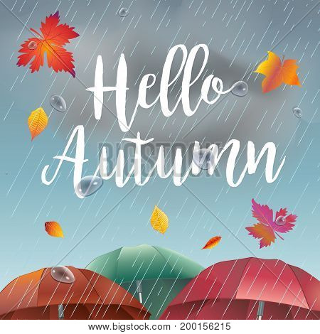 Hello Autumn, rainy day landscape with fall leaves, umbrella, rain, sky clouds. Fall rain weather, fall season, Rainfall, rain drops background vector illustration. Realistic drawing