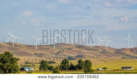 A massive wind farm in southern California by far the biggest i've ever seen.