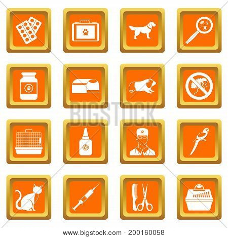 Veterinary icons set in orange color isolated vector illustration for web and any design