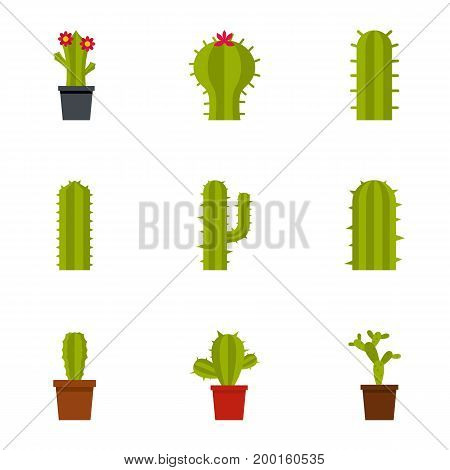 Types of cactus icon set. Flat style set of 9 types of cactus vector icons for web isolated on white background