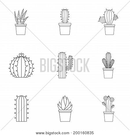 Desert cactus icon set. Outline style set of 9 desert cactus vector icons for web isolated on white background