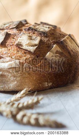 Close-up of Whole grain Sourdough Bread on a gray kitchen towel