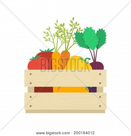 Wooden box with vegetables: tomatoes carrots capsicums beetroots. Harvest concept vector illustration