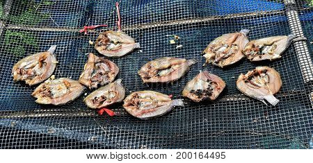 many fly on dirty dry salted fish are not hygienic on dirty grille