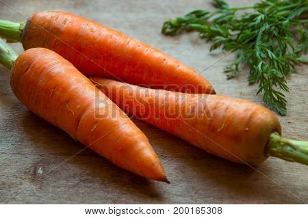 Young Fresh Carrots On Wooden Background. Organic Natural Food