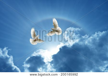 White Doves in the air over cloudy sky concept of religion and peace