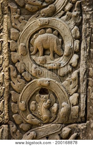 Ta Prohm Temple And Bas Relief  Wall Dinosaur