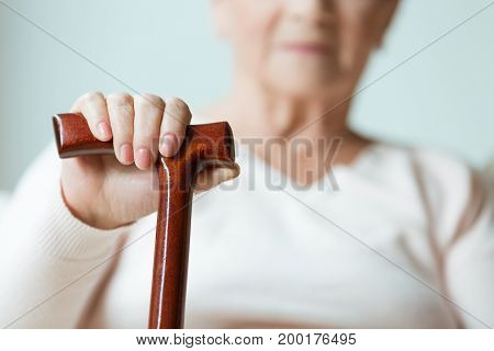 Hand On Wooden Stick