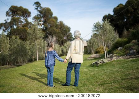 Rear view of granddaughter and grandmother standing together in garden on a sunny day