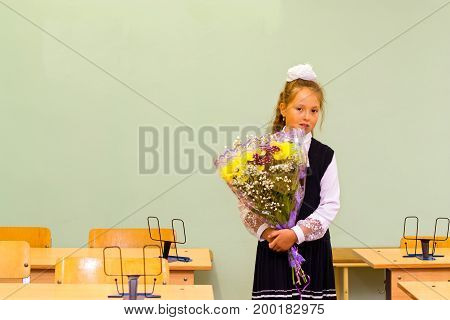 Little first-grader girl-student in school on knowledge day - 1. September. Student of elementary school in uniform with bows posing in classroom for student Desk. Education in Russia