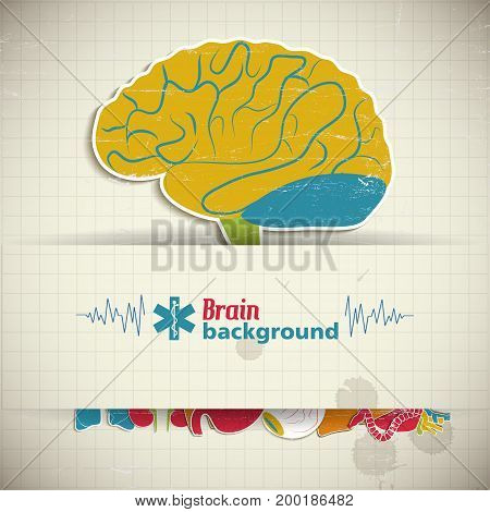 Internal human organs concept with brain sticker and medical symbols on squared background vector illustration