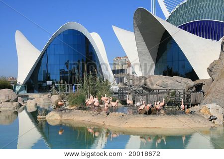 View of L'Oceanografic in Valencia