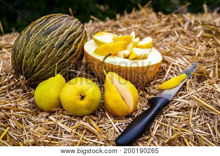 Whole and half-sliced ripe melons lie on the straw next to them are several yellow pears and a stainless steel knife with a black handle. Inside the melon halve lie sliced pieces of pear.