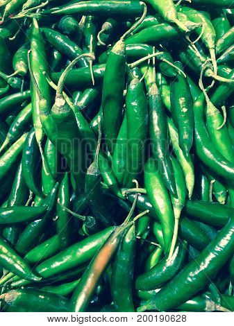 Green chili, fresh vegetable for your health