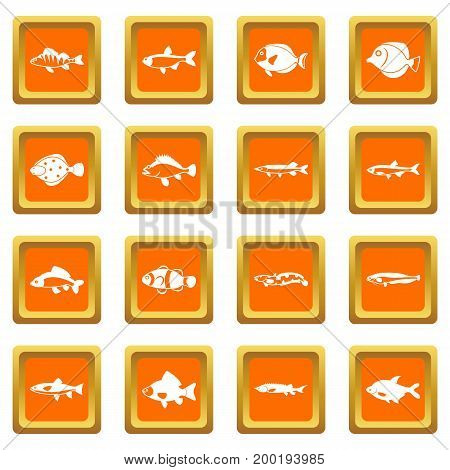 Cute fish icons set in orange color isolated vector illustration for web and any design