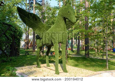 Figure of pegasus made of green lawn grass in the park free space. Green grass covered topiary pegasus landscape design. Grass figure of pegasus topiary figure