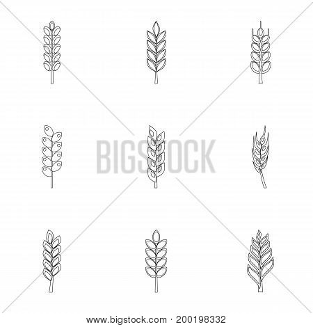Cereal grain icon set. Outline style set of 9 cereal grain vector icons for web isolated on white background
