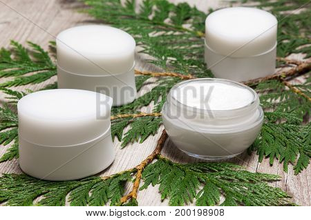 Jars of moisturizing creams on fresh green leaves. Natural cosmetics for women