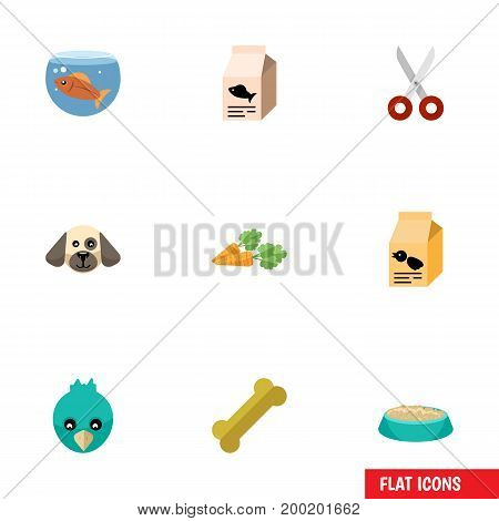 Flat Icon Pets Set Of Fishbowl, Root Vegetable, Osseous And Other Vector Objects