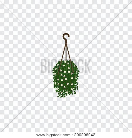 Blossom Vector Element Can Be Used For Blossom, Hanging, Flower Design Concept.  Isolated Hanging Isometric.