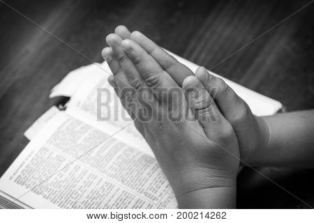 A young boy praying over the bible