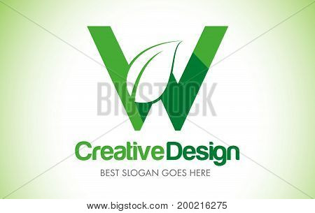 Green_leafletter26 [converted]