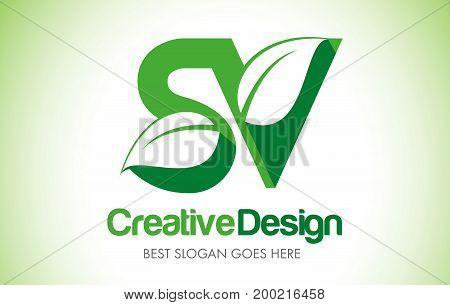Green_leafletter82 [converted]