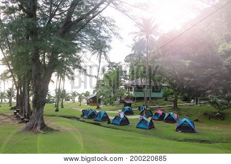 Tents on green grass near the beach camping site in Thailand