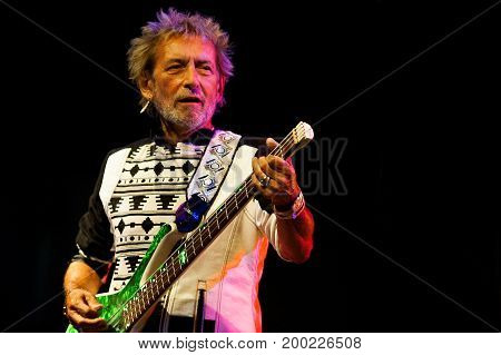Vasco Rossi Bassist Claudio Golinelli During A Concert Performance