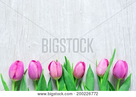 Pink Tulips Flowers on wooden table for March 8 International Womens Day Birthday Valentines Day or Mothers day - Closeup