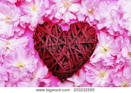 Heart Of Red Willow Threads Surrounded With Soft Sakura Flowers