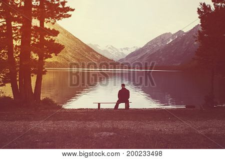 Young Man Sitting On Bench Under Lone Tree.