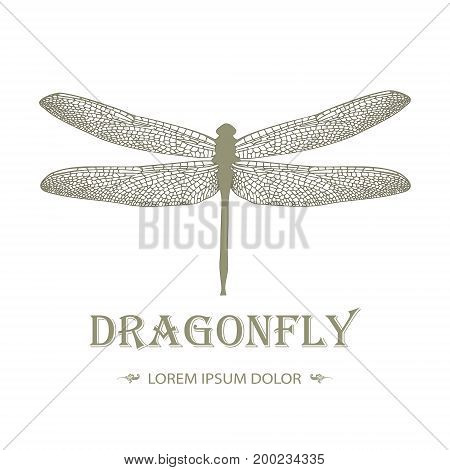 Dragonfly Logo In Vintage Style On A Black Background. Stylish Design Of Tattoos. Vector Illustratio