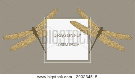 Vintage Card With Two Dragonflies On A Beige Background. Template Card Design With A Place For Your