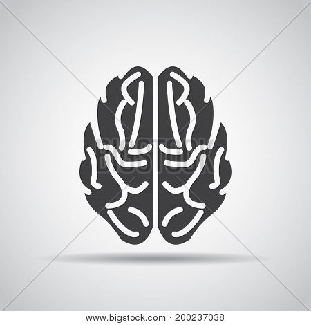 Brain icon with shadow on a gray background. Vector illustration