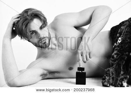 Bearded Macho Man Under Fur Coat On White Background