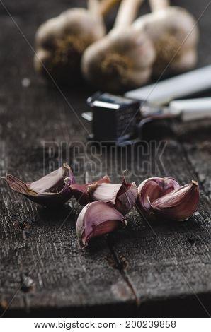 Cloves of garlic on a wooden black table. Fresh garlic bulb with iron garlic press. Vintage background. Farmer. Medicine and healthy. Traditional medicine.