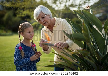Smiling granddaughter and grandmother looking at a yellow flower on the plant
