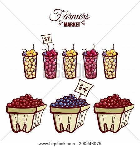 Farmers market. Local food. Baskets and glasses of various ripe berries isolated on white background. Hand drawn vector illustration