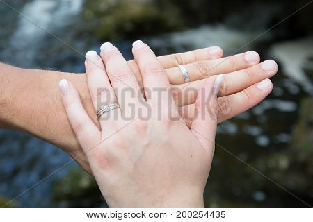 Hands Of The Bride And Groom In Love In Summer Park