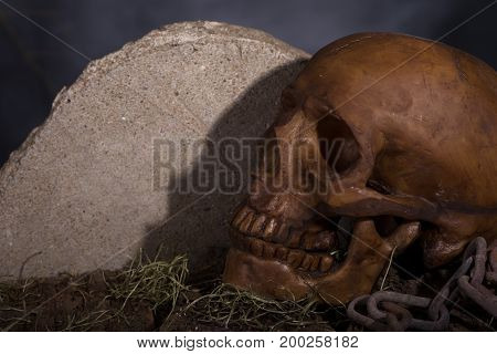 Closeup of a human halloween skull next to a headstone