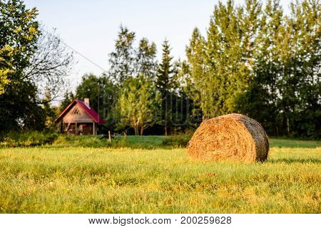 Countryside Fields In Summer With Rolls Of Hay