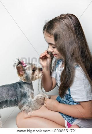Girl to train a dog on a white background
