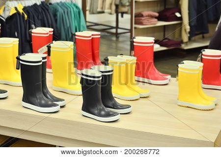 Rubber boots of different colors on store shelves in a shop
