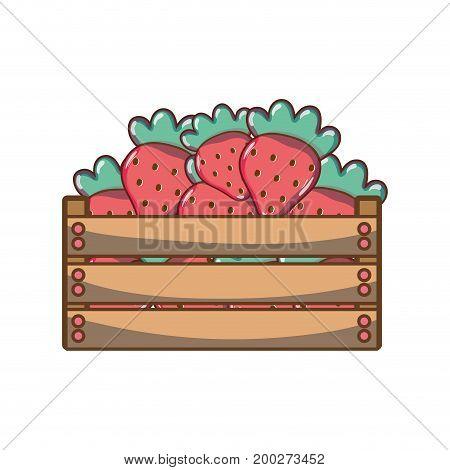 delicious strawberries fruits inside basket vector illustration